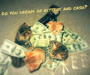 hacer-dinero-blog