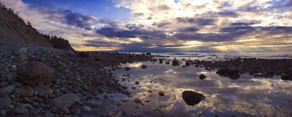 Puget-Sound-Tide-Pool-Panorama
